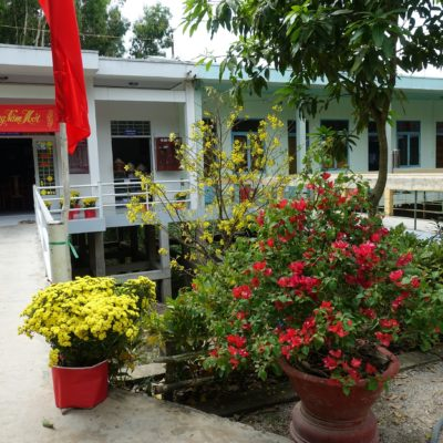 Blumen - Gelb und Rot