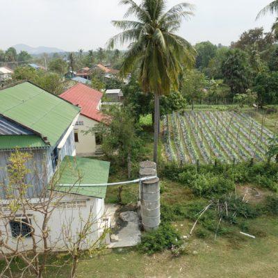 Garten mit Schulgebäude