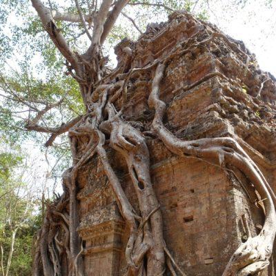 2018_02_18_PhnomPenh-SiemReap29