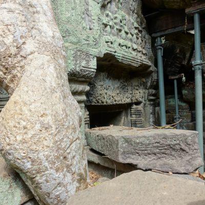 Wurzeln ziehen sich quer durch den Tempel
