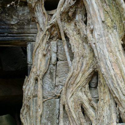 2018_02_19_Angkor Wat_14