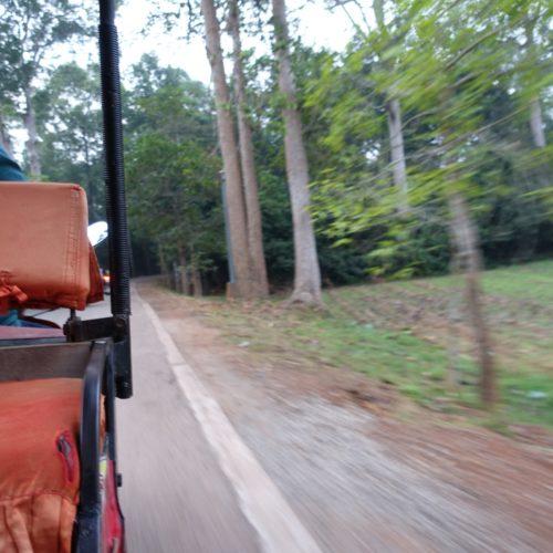 2018_02_24_Angkor_morgens_26