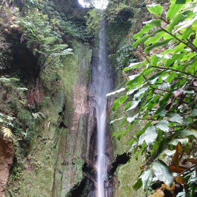 Ein Wasserfall (light)